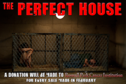 Watch The Perfect House